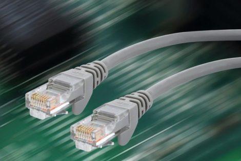 Zwei_RJ45-Stecker_für_die_Ethernet-Verkabelung